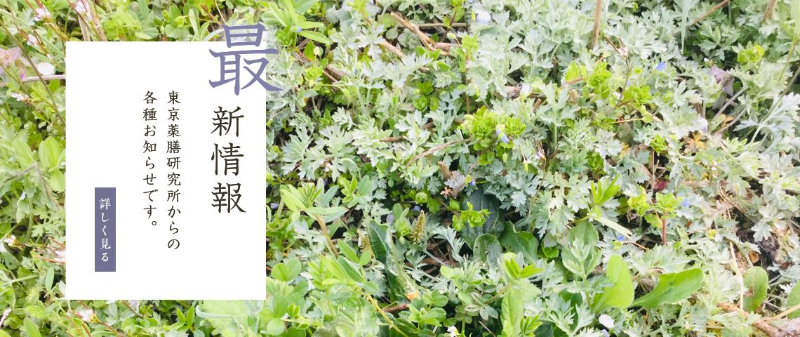 東京薬膳研究所からの各種お知らせです。